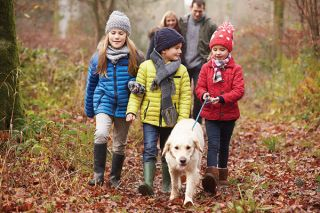 family walking dog together in the woods