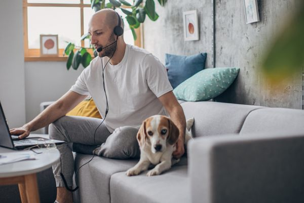 man working on couch with dog