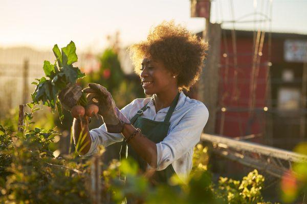 a woman gardening outside
