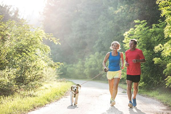 Couple jog in the summer with their dog