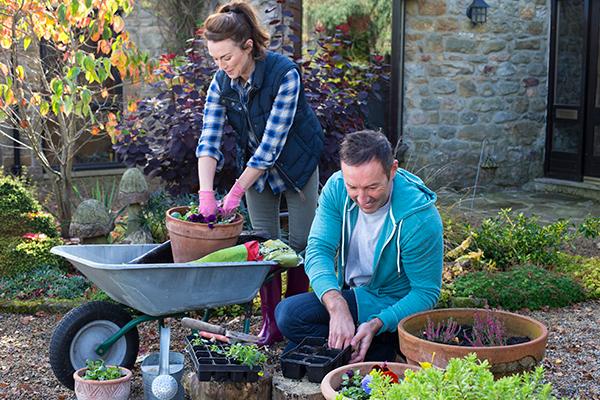 Don T Get Hurt In Your Garden Lifemark